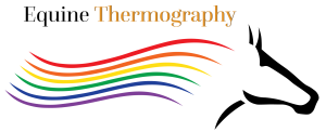 Equine Thermography Pennsylvania